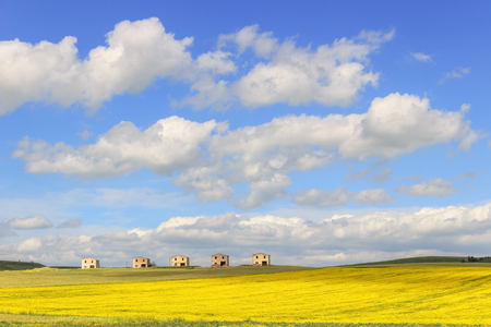farmhouses: Between Apulia and Basilicata: farmhouses abandoned in a field of yellow flowers.Italy.Spring hilly rural landscape: farmhouses topped by clouds. Stock Photo