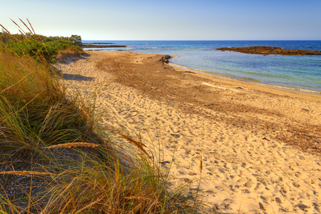 The most beautiful sandy beaches of Italy: Nature Reserve of Torre Guaceto.BRINDISI (Apulia) -ITALY-Mediterranean maquis: a nature sanctuary between the land and the sea.