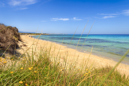 desert ecosystem: The Regional Natural Park Coastal Dune. (Apulia) ITALY.In the distance you can see the town Torre Canne.The park covers the territories of Ostuni and Fasano along eight kilometers of coastline. Stock Photo