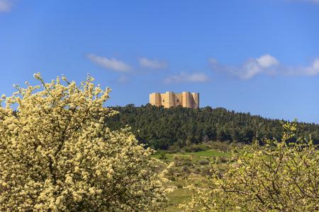 Spring landscape: Alta Murgia National Park.In the background Castel del Monte.Apulia-ITALY (Andria) -