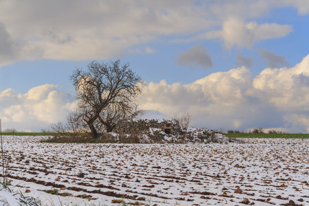 Rural winter landscape: Alta Murgia National Park. Apulian Christmas: Trullo with tree in a snowy field.Italy, Apulia.Typical Apulia rural landscape During a snowfall. Stock Photo