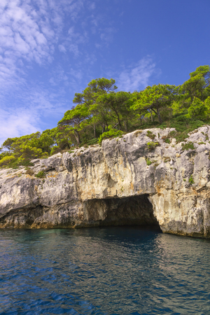 Nature landscape of Gargano National Park coast of Tremiti Islands archipelag, Italy (Apulia) .SEA (or littoral) cave topped by Pinus halepensis (Aleppo pine or) native to the Mediterranean region.