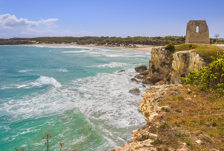 The most beautiful coast of Apulia: Torre DellOrso Bay, ITALY (Lecce).Typical seascape of Salento: view of the wide sandy beach of fine silver, the dune with pinewood, and old ruin of watchtower.