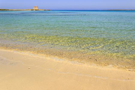 Zomerzeegezicht, Apulische kust: Natuurreservaat van Torre Guaceto. Carovigno (Brindisi) -ITALY- Mediterrane maquis: een natuurreservaat tussen het land en de zee. Op de achtergrond de uitkijktoren.