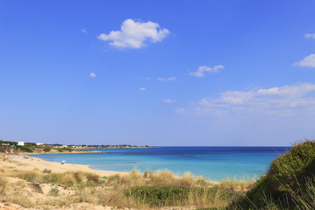 Italy summer seascape,Apulia coast: Marina di Lizzano beach (Taranto). In the foreground dunes with lush mediterranean scrub.The coastline is characterized by a suggestive alternation of sandy coves and jagged cliffs overlooking a truly clear and crystall