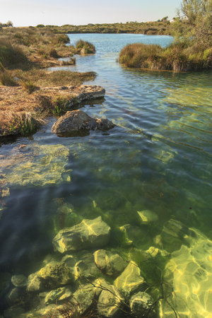 Apulia nature: Regional Natural Park Porto Selvaggio and Palude del Capitano:The karst phenomenon has given rise to caves that have collapsed to form puddles of brackish water. ITALY (Salento).