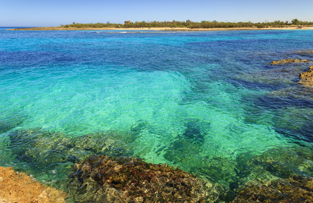 desert ecosystem: Summer seascape, Apulia coast: Nature Reserve of Torre Guaceto. Carovigno (Brindisi) -ITALY-  Mediterranean maquis: a nature sanctuary between the land and the crystalline sea. Stock Photo