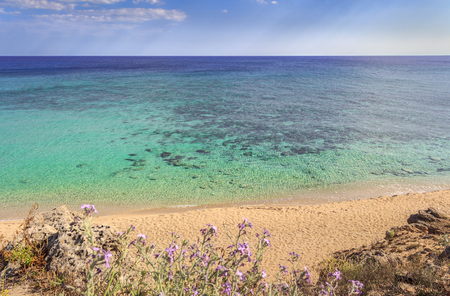 The most beautiful beaches of Italy: Campomarino dune park.Summer relax:umbrella isolated between sea dunes,Taranto (Apulia). The protected area extends along the entire coast of the town of Maruggio.Summertime beach.The coastline is characterized by a su