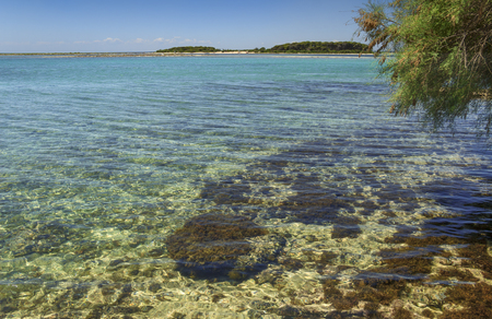 Summer holidays.Ionian coast of Salento:Porto Cesareo (Lecce).- ITALY (Apulia) -In the background the Big Island (or Isola Grande) Nature Reserve Islet located in front of harbor of Porto Cesareo.