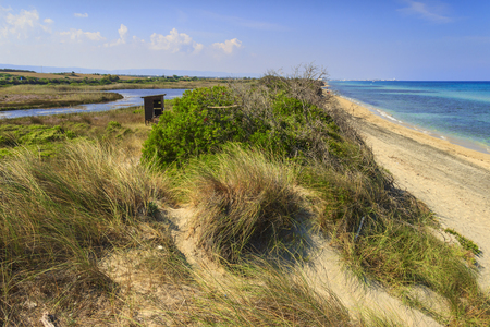 The Regional Natural Park Dune Costiere. BRINDISI (Apulia)-ITALY-The park, from Torre Canne to Torre San Leonado, covers the territories of Ostuni and Fasano along eight kilometers of coastline.