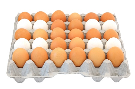 Eggs in a box isolated on white background photo
