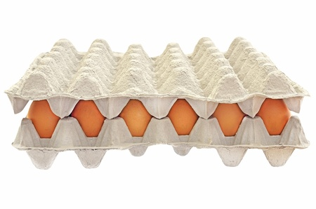Eggs in a box isolated on white background Stock Photo