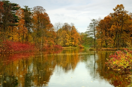 Colorful autumn trees on the lake in the evening photo