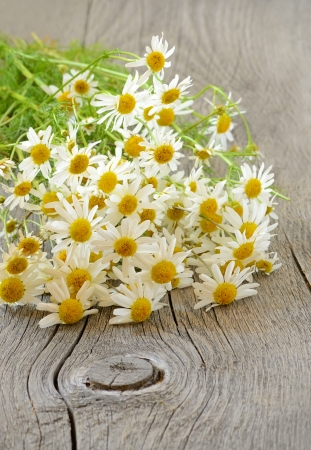 Chamomile flowers on wooden table