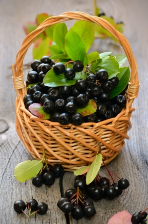 Black chokeberry in the basket on wooden table