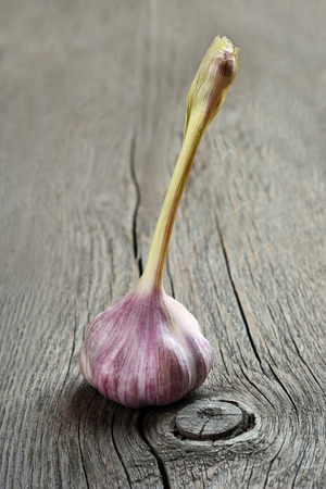 Garlic on wooden background, close up view photo