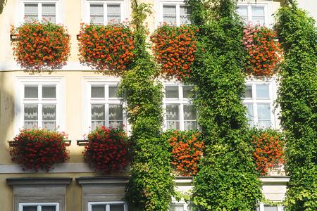 realestate: Flowerpot on windows outside in european town. Stock Photo