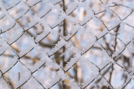 Fence covered with frost in the winter.