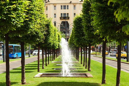 Beautiful alley with fountains. Summer hot day at city. Green trees and green grass among traffic street. Small fountains.