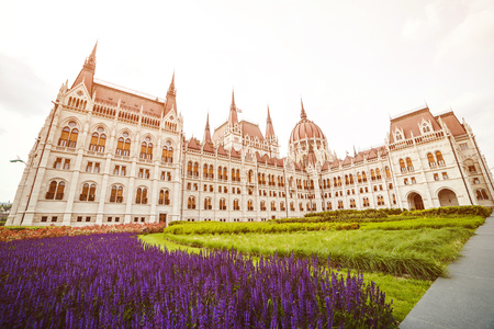 Beautiful summer violet flowers near Parliament. Travelling to Europe. Budapest city landmark building.