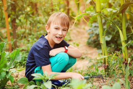 Cute child gardener. Little boy working with rake in garden. Child working in vegetable garden. Gardening. Little helper planting plants in the garden. Garden and people concept. Childhood.