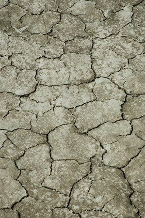 dry ground Stock Photo - 7520317