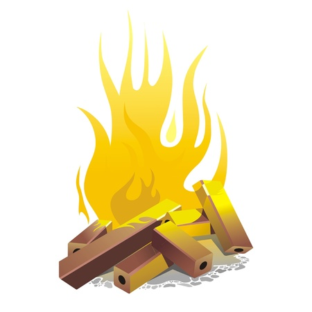 burnt wood: campfire. vector illustration