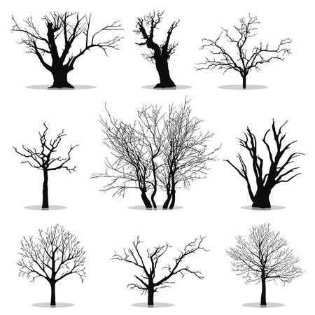 willows: Collection of trees silhouettes Illustration