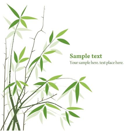 japones bambu: Bambú
