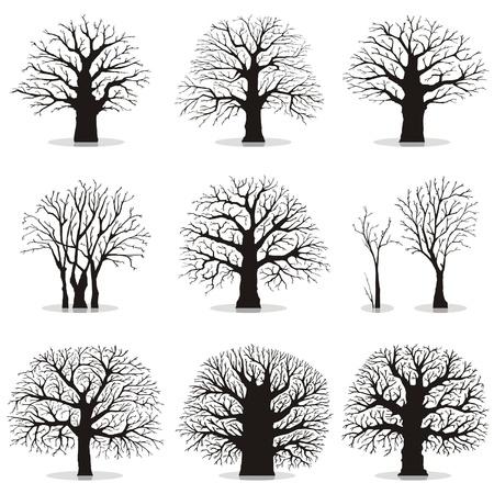 lindeboom: Het verzamelen van bomen silhouetten Stock Illustratie