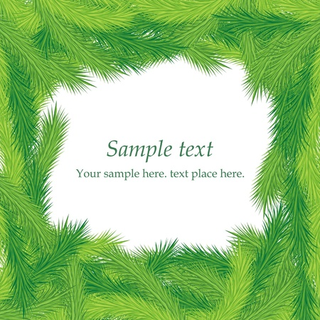 Christmas fir tree texture Stock Vector - 16852462