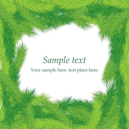 Christmas fir tree texture Stock Vector - 16852462