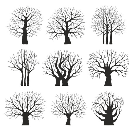 poplar: Collection of trees silhouettes Illustration