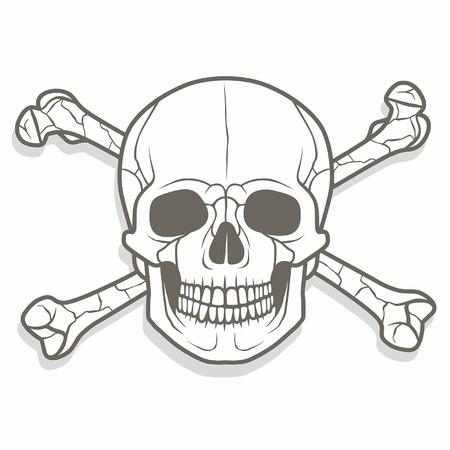 skull and bones: skull and bones