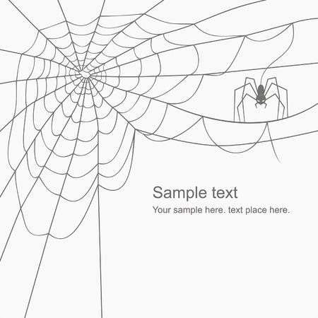 cobweb: vector cobweb