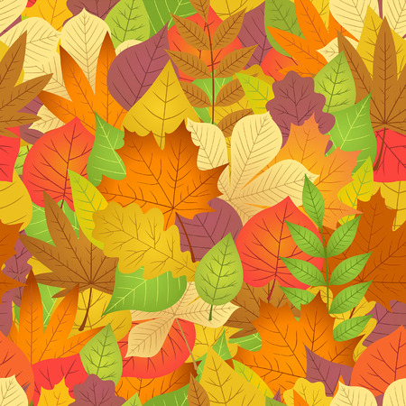 chokeberry: seamless with autumn leaves on white background