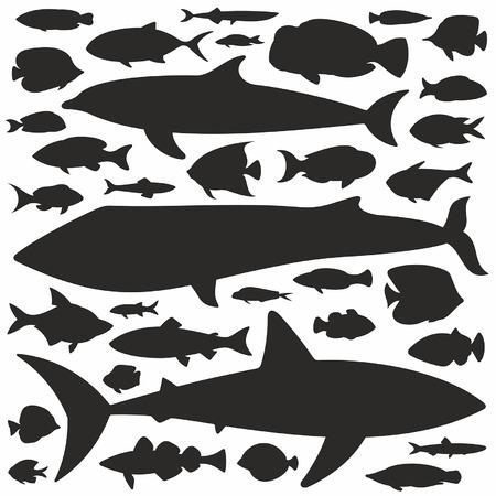 peces: Conjunto de la silueta de pescado Vectores