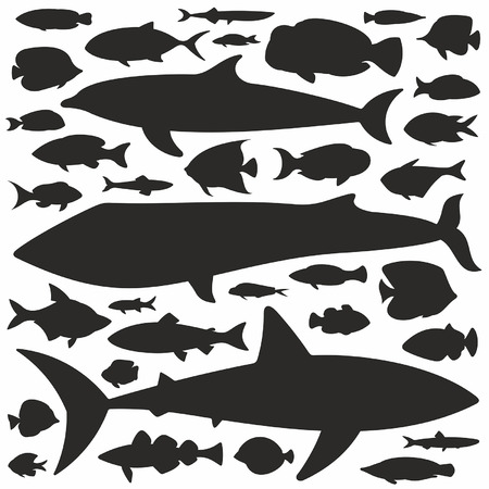 ichthyology: Fish silhouette set