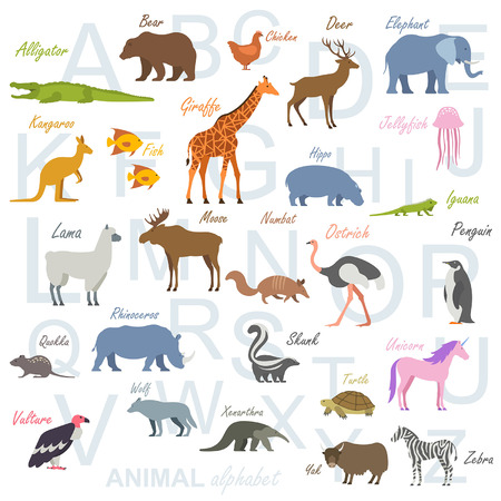 Animal alphabet poster for children