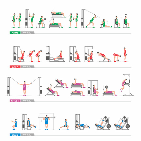 gym workout: set Workout in gym for the arms, legs, back, chest Illustration