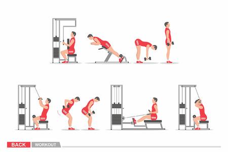 Set of workout for back