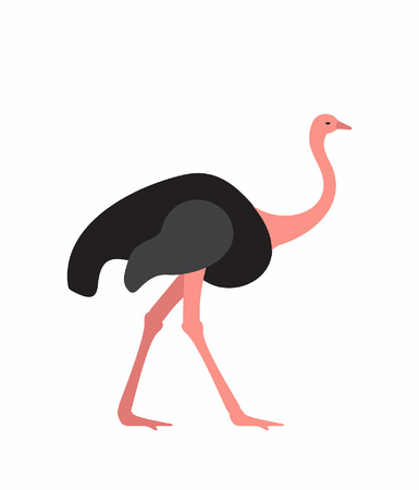 Ostrich animal in silhouette cartoon illustration, isoalted on white
