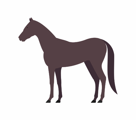 Horse icon on white background, vector illustration.