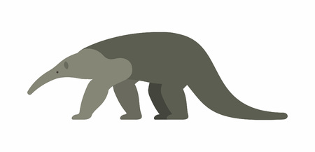 Giant anteater icon isolated on white background, vector illustration.