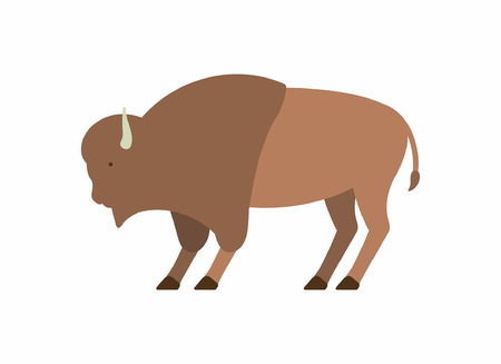 Buffalo icon isolated on white background, vector illustration.