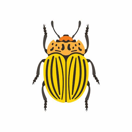 Colorado beetle Banque d'images - 85335910