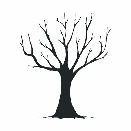 Tree silhouette on white background