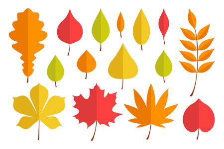 Autumn leaves set. flat style. isolated on white background