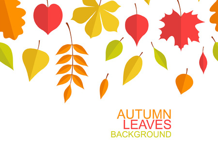 Autumn leaves background. flat style. isolated on white background