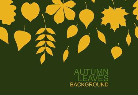 Background of yellow autumn leaves. flat style. isolated on green background 일러스트